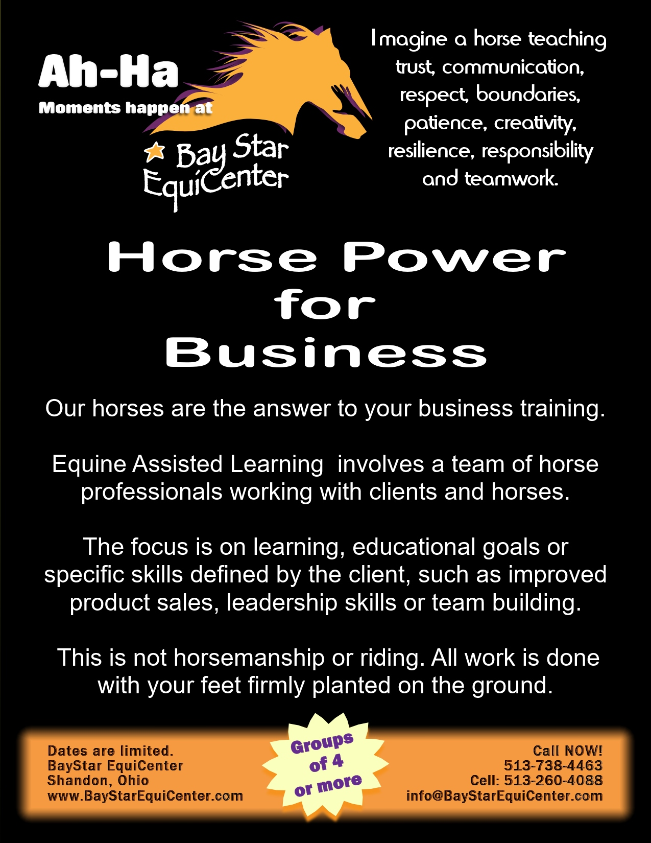 Horse Power for Business