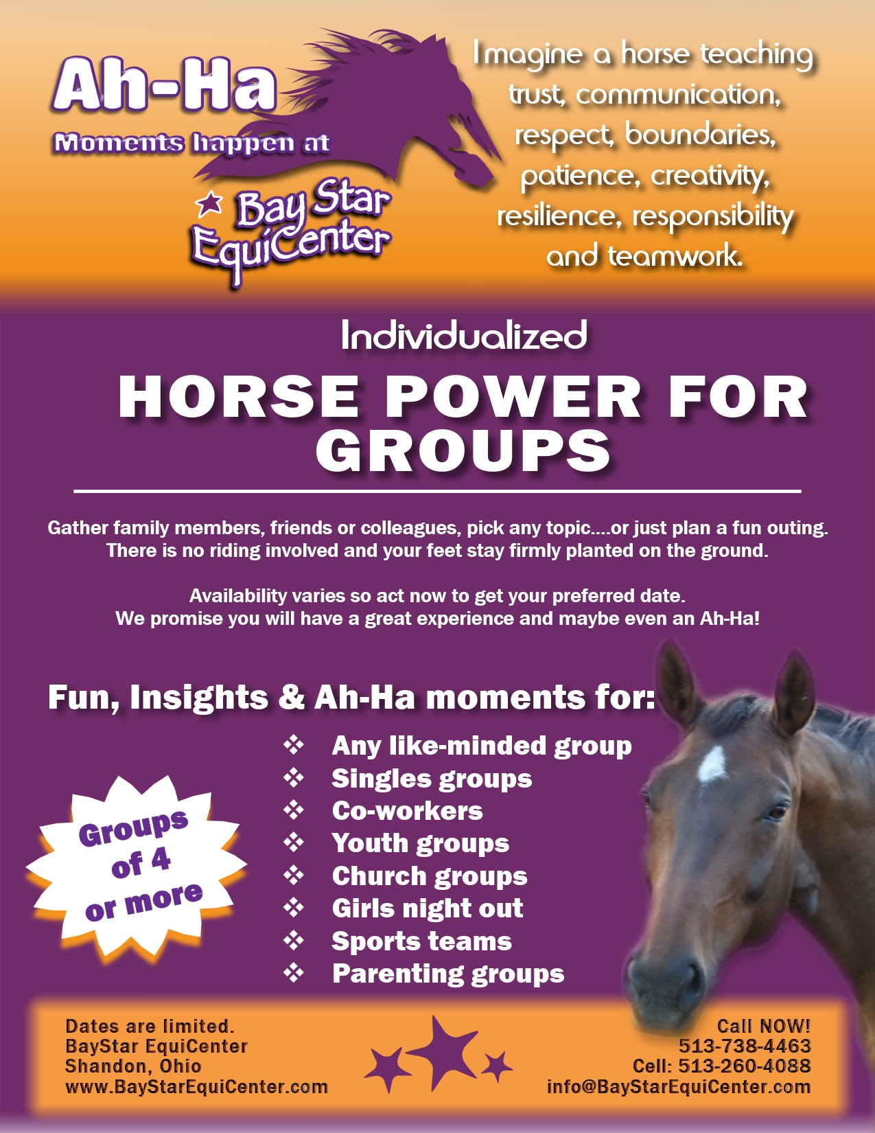 Horse Power for Groups